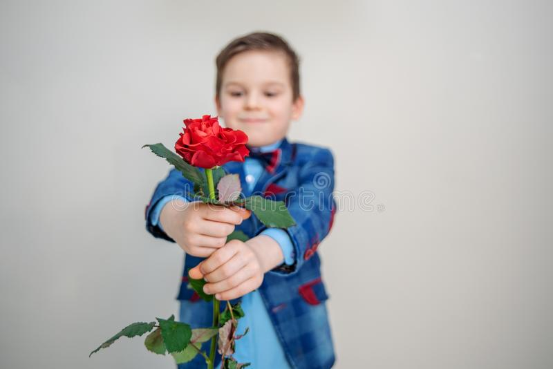 Little boy in suit standing with red rose, isolated on a light background. Little boy in suit standing with red rose, on a light background, st. valentines day royalty free stock photos