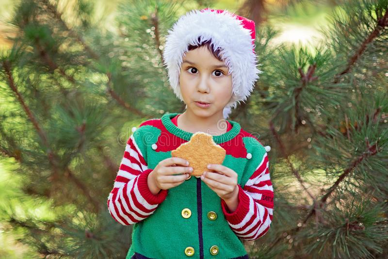 Little boy in sweater and hat waiting for a Christmas in the wood. Half-length portrait of a little boy in elf hat and red sweater eating cookie near christmas royalty free stock image