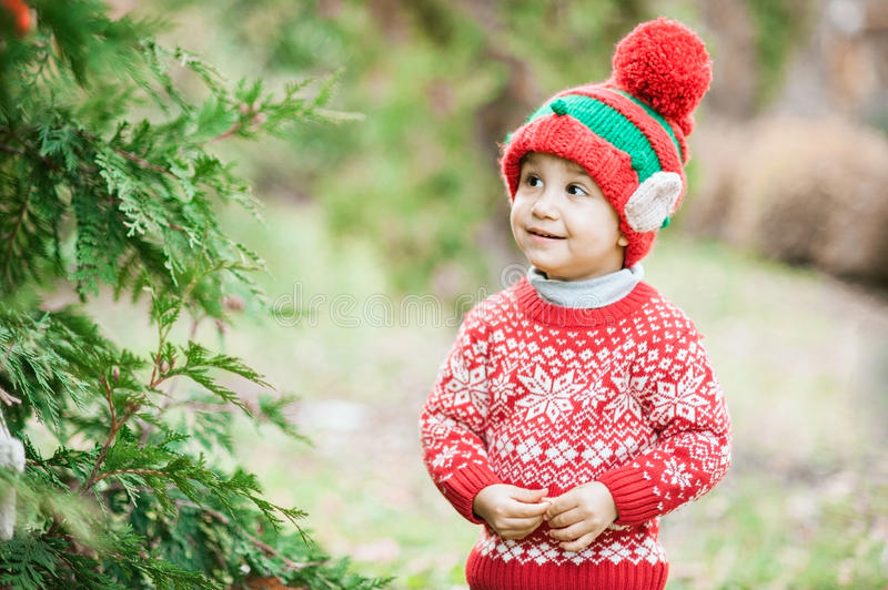 Little boy in sweater and hat waiting for a Christmas in the wood royalty free stock image