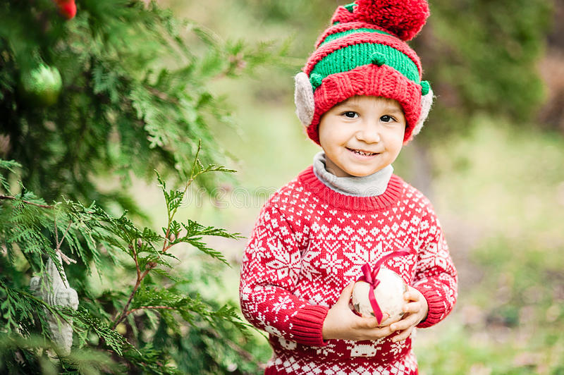 Little boy in sweater and hat waiting for a Christmas in the wood stock image