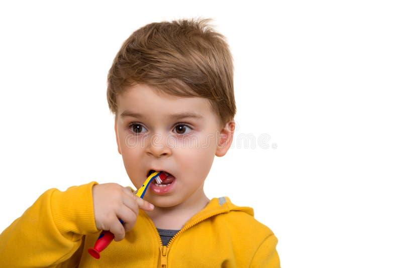 Little Boy Szczotkuje zęby na białym tle obrazy royalty free