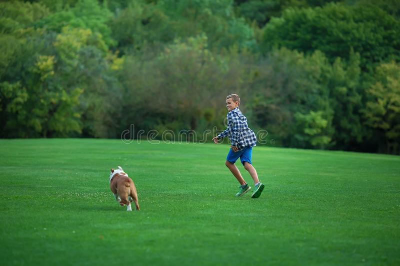 Little boy teenager with his dog bulldog in park on a sunny day on green grass park land enjoy life together with his friend.  royalty free stock image