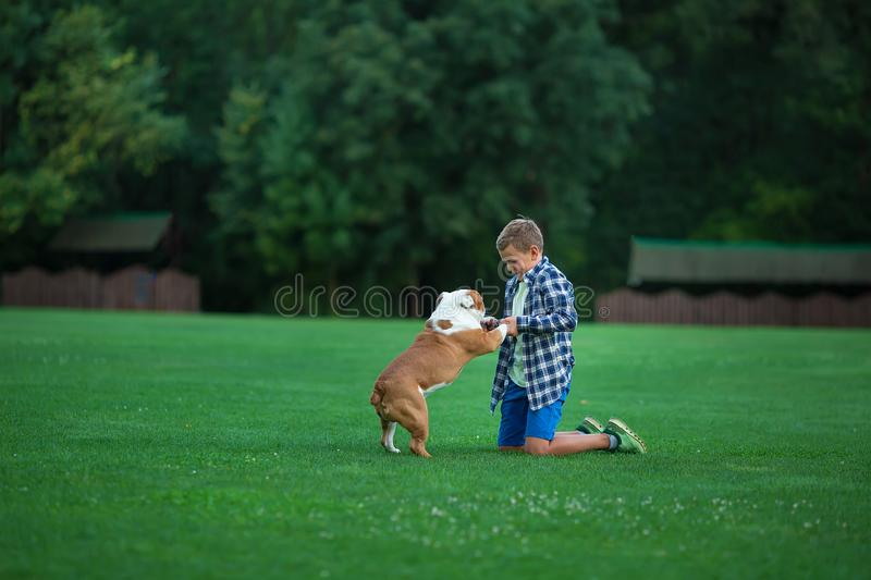 Little boy teenager with his dog bulldog in park on a sunny day on green grass park land enjoy life together with his friend.  royalty free stock images