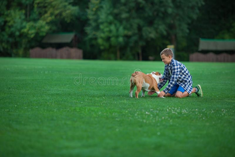 Little boy teenager with his dog bulldog in park on a sunny day on green grass park land enjoy life together with his friend.  stock images