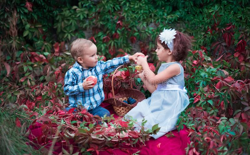 A little boy treats a girl with an apple. Beautiful kids in the park in the fall stock photo