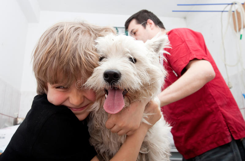 Little boy at vet with his dog stock photography