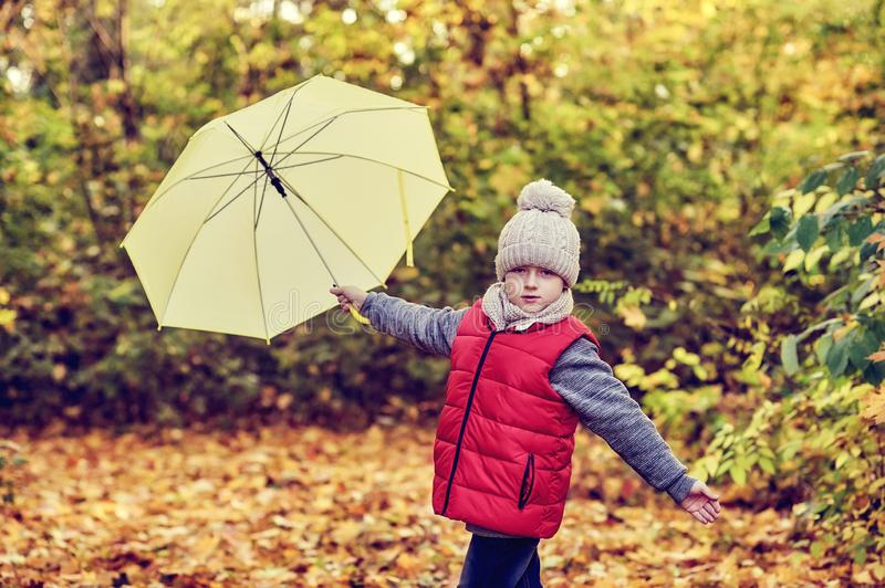 Little boy on a walk in the autumn forest royalty free stock images