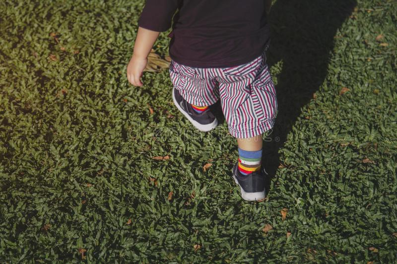 The little boy is walking on the grass in the evening royalty free stock image