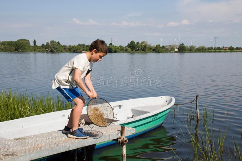 Little boy playing at the lake royalty free stock image