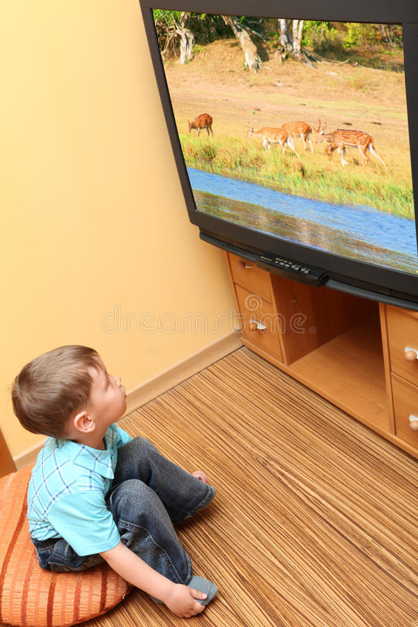 Download Little Boy Watching Cinema On TV Stock Images - Image: 9551594