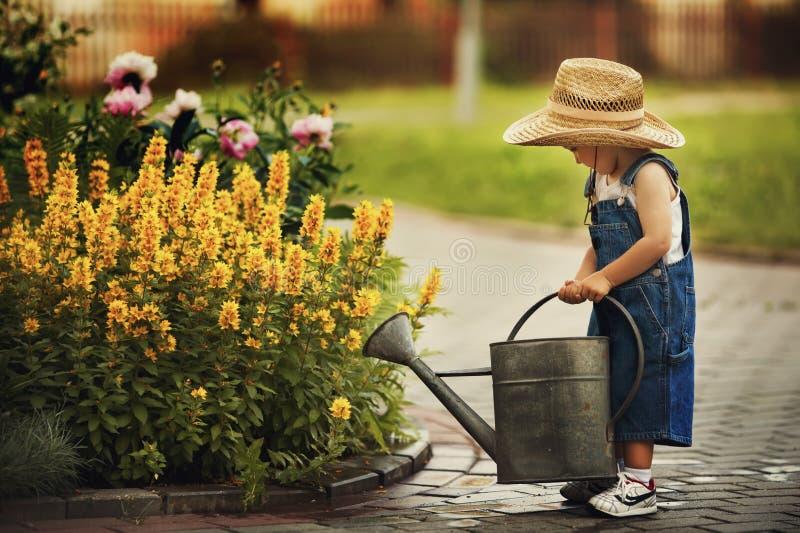 Little boy watering flowers stock image