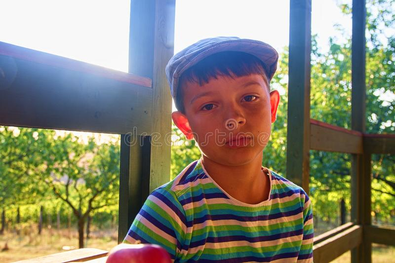 Little boy is wearing flat cap. Apples and grapes on a table. Smiling little boy is sitting at a table on a verandah an stock images