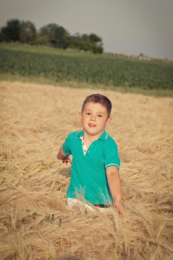 Download Little boy in wheat field stock photo. Image of girl - 25200802