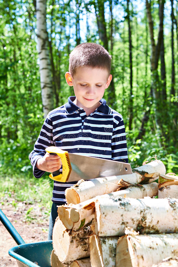 Little boy with wheelbarrow sawing wood in forest royalty free stock image