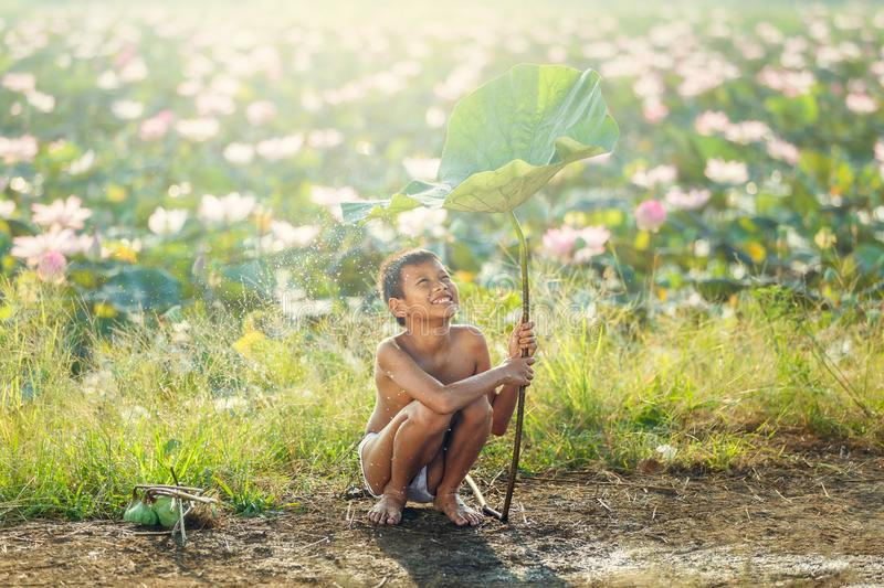 Little boys sitting and playing water under lotus leaf, Asian kid smiling and happiness playing water under lotus leaf after raini royalty free stock images