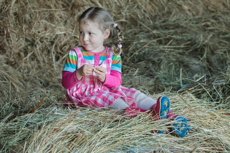 Little braided girl wearing dress and gum boots sitting in country farm hayloft on dried loose grass hay stock photo