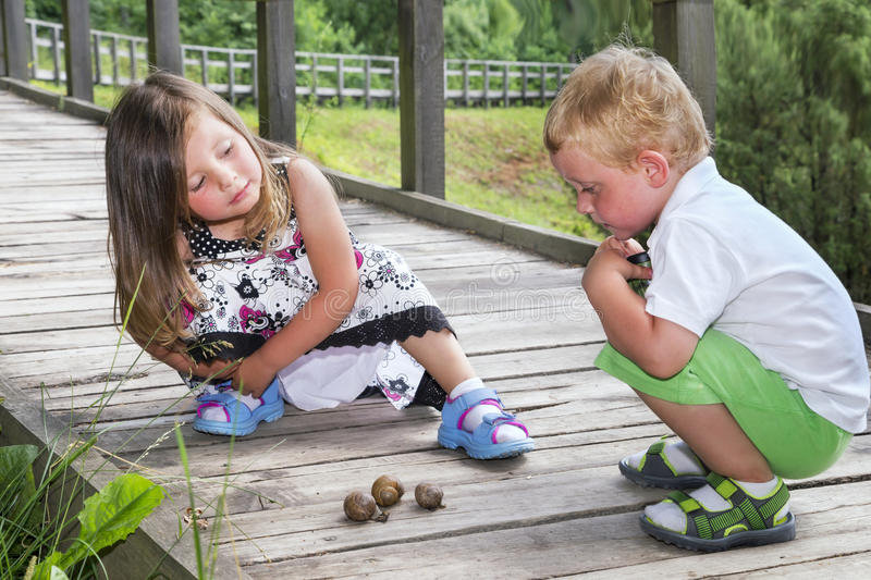 Little brother and sister looking at three snails. On a wooden track stock image
