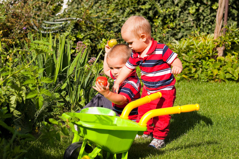 Little brothers enjoy garden royalty free stock photo