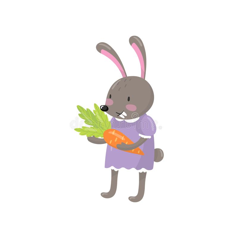Little bunny girl standing and holding orange carrot. Humanized forest animal dressed in human clothes. Cute rabbit with. Long ears. Colorful flat vector royalty free illustration