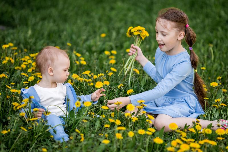 Little caucasian boy and girl sitting on dandelion flowers meadow royalty free stock images
