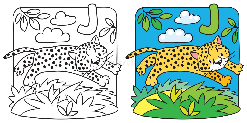 Little Cheetah Or Jaguar Coloring Book. Alphabet J Stock Vector ...