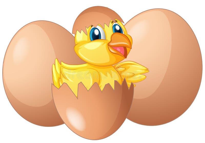 Little chick hatching egg. Illustration stock illustration