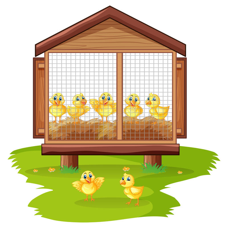 Little chicks in chicken coop. Illustration stock illustration