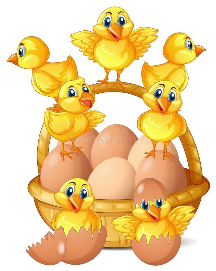 Little chicks and eggs in basket. Illustration vector illustration