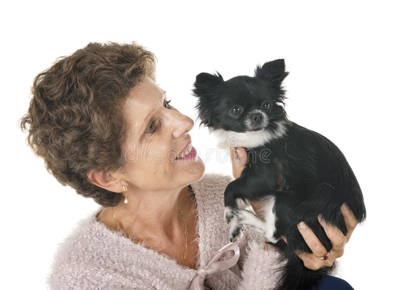 Woman and dog. Little chihuahua and woman in front of white background stock images