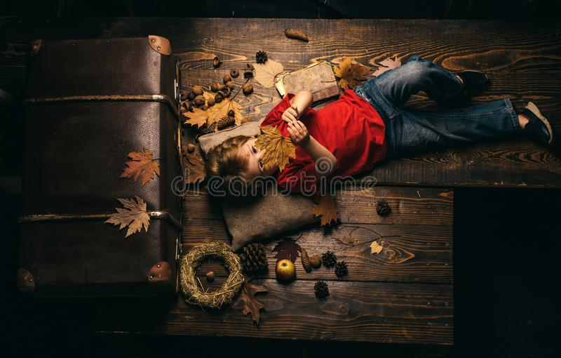 Little child boy lies on a warm blanket dreams of warm autumn. Blonde little boy resting with leaf on stomach lies on stock image