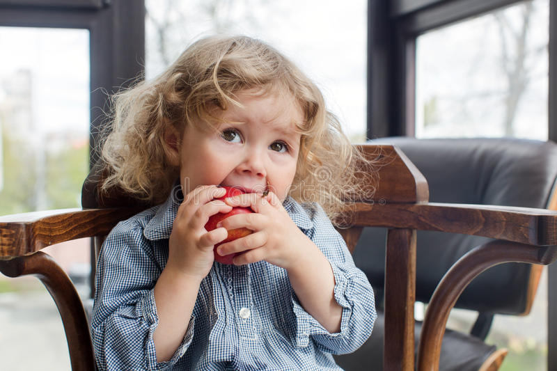 Little child eating red apple indoors royalty free stock images