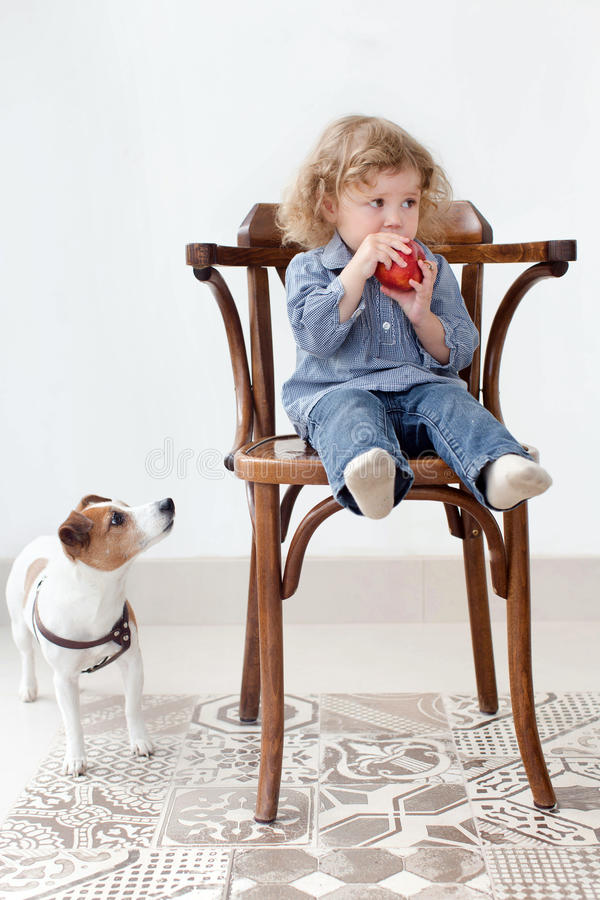 Little child eats apple in studio and dog looking stock photography
