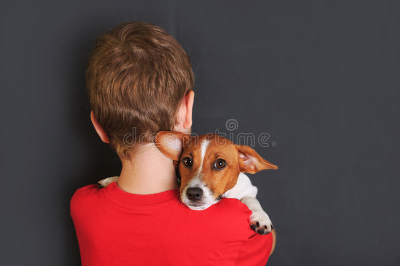 Little child embracing cute puppy jack russell. Best friend. Back view stock photos
