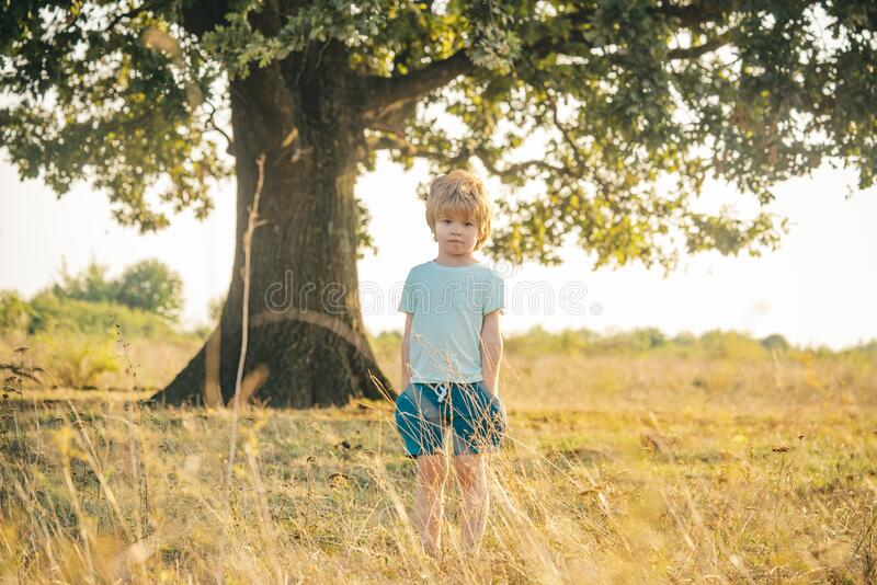Little child on fresh air. Beautiful fun day for cute boy in nature. Funny kid. Child care. Posing outside. royalty free stock photos