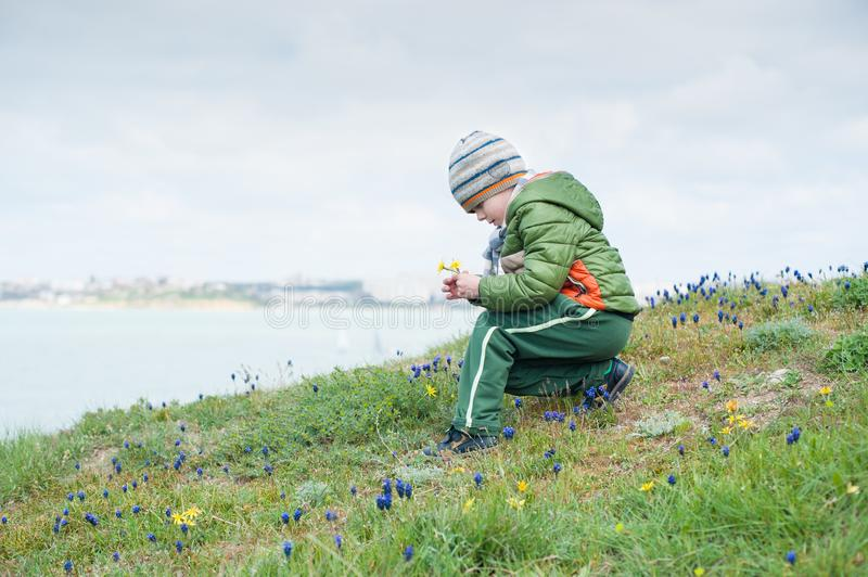 Little child in jacket and hat collecting spring flowers on green slope against backdrop of sea. Little child in jacket and hat collecting spring flowers on a royalty free stock images
