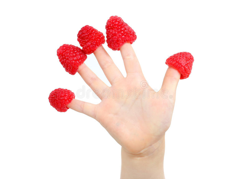 Little child's hand with raspberry hats on fingers stock photography