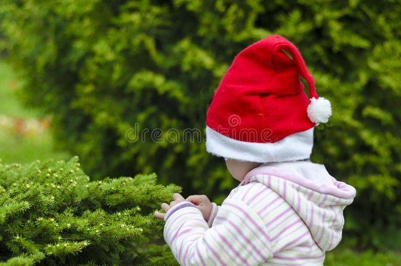 Little child in santa hat on a green background. decorate a christmas tree. winter holidays. waiting for the new year stock image