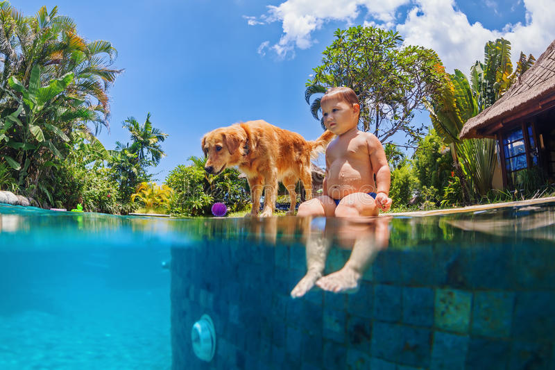 Little child swim with dog in blue swimming pool. Funny underwater photo of little baby and dog swim in blue outdoor swimming pool. Children water sports stock images