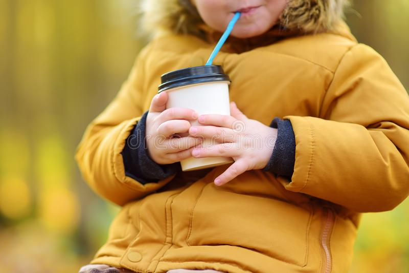 Little child walking in the forest and drinking hot cocoa at cold autumn day. Toddler boy enjoy of fall weather stock photos