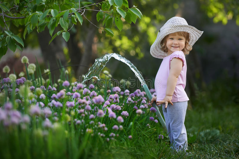 Little child watering onions in the garden stock images