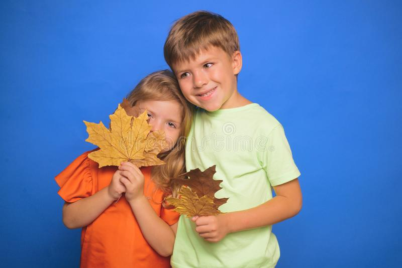 Little children in autumn playing with leaves on autumn colour background. Little boy and girl in seasonal clothes with stock image