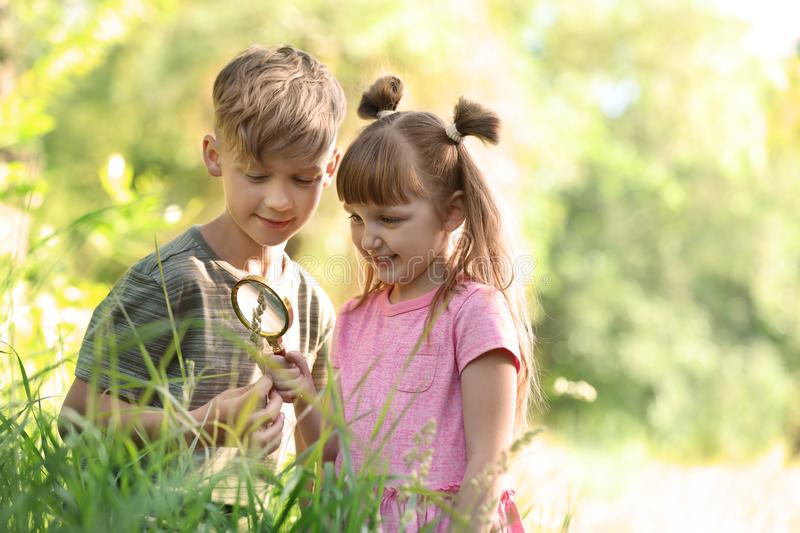 Little children exploring plant outdoors royalty free stock photo