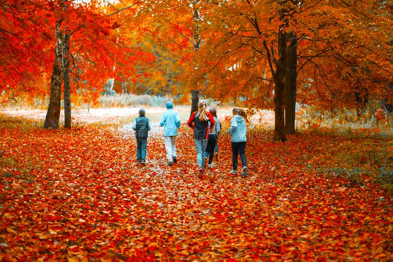 Running athletes in the park on a run in the early morning. Several children are running in the woods doing sports stock image