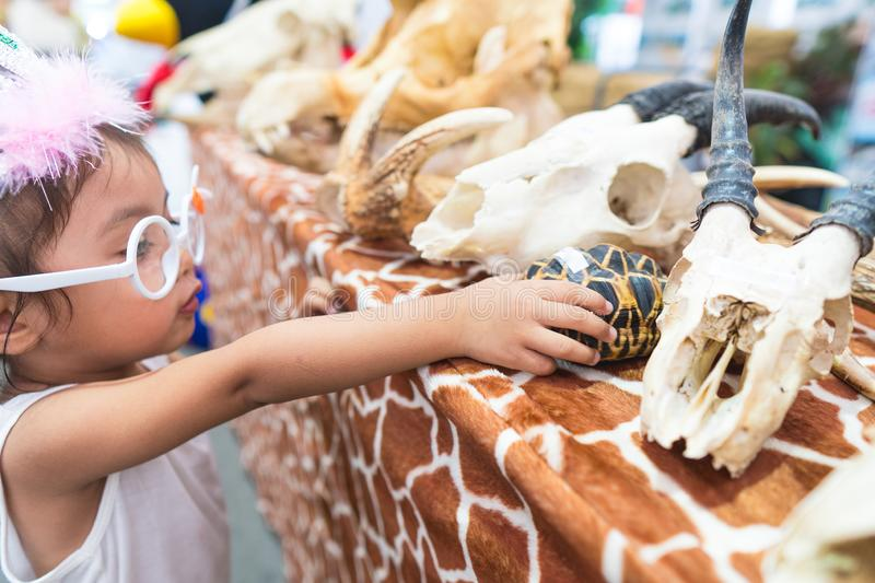 Little children and various animal skeletons. royalty free stock photography