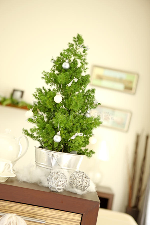 Download Little christmas tree stock photo. Image of table, natural - 21966498