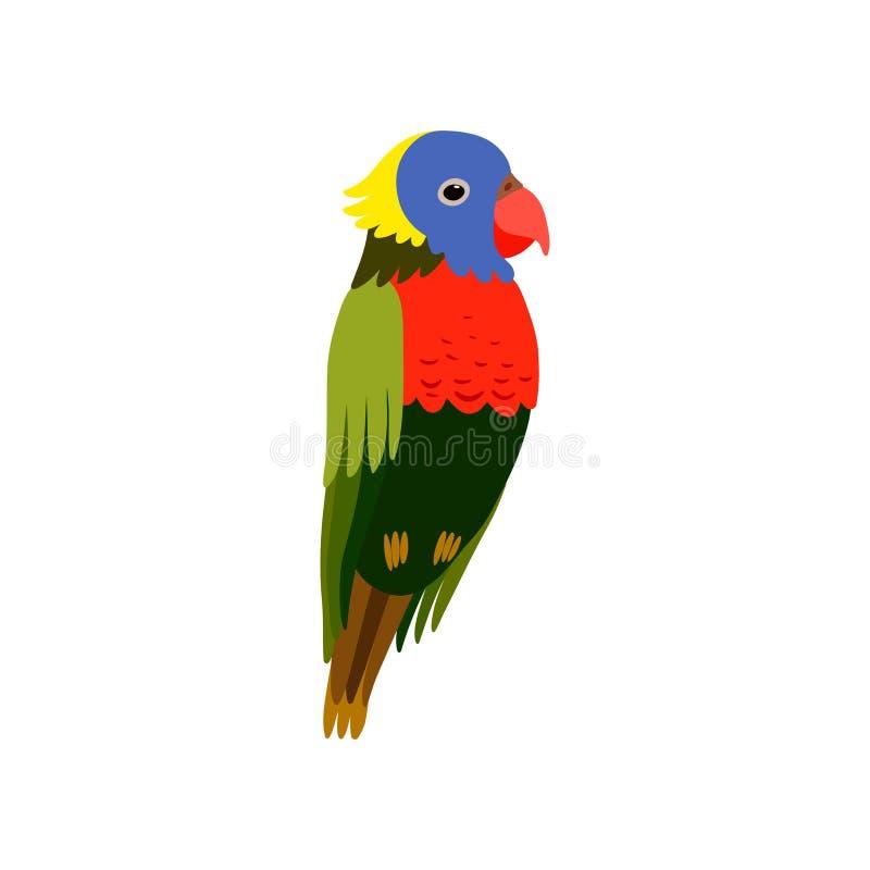 Little Colorful Bird, Cute Parrot Budgie Home Pet Vector Illustration vector illustration