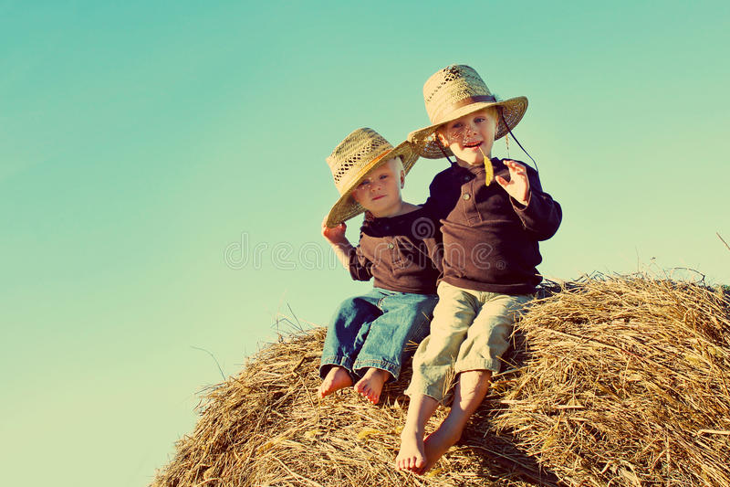 Little Country Boys on Farm stock photography