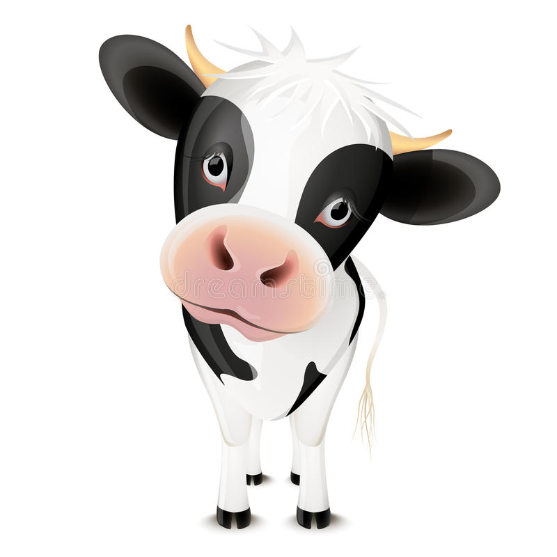 Little cow royalty free illustration