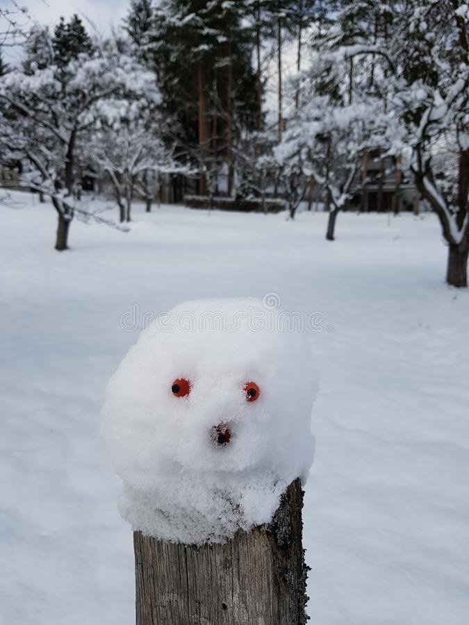 Little crazy snowman head royalty free stock photography