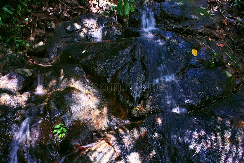 Little Creek Waterfall Rock Golden Hour Plant Landscape. Water Leaves Green Brown royalty free stock photos